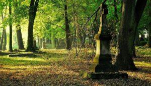Te groby mówią dziś do nas w swej ciszy